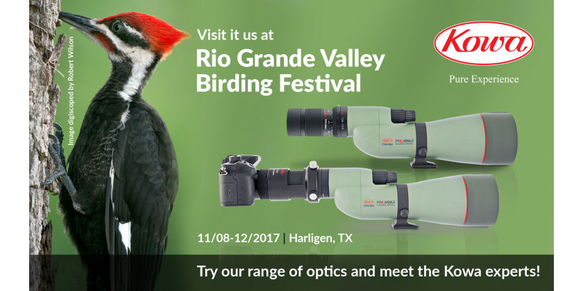 We're at Rio Grande Valley Birding Festival 2017