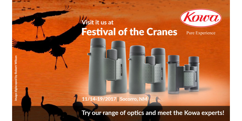 Exhibitor at the 2017 Festival of Cranes